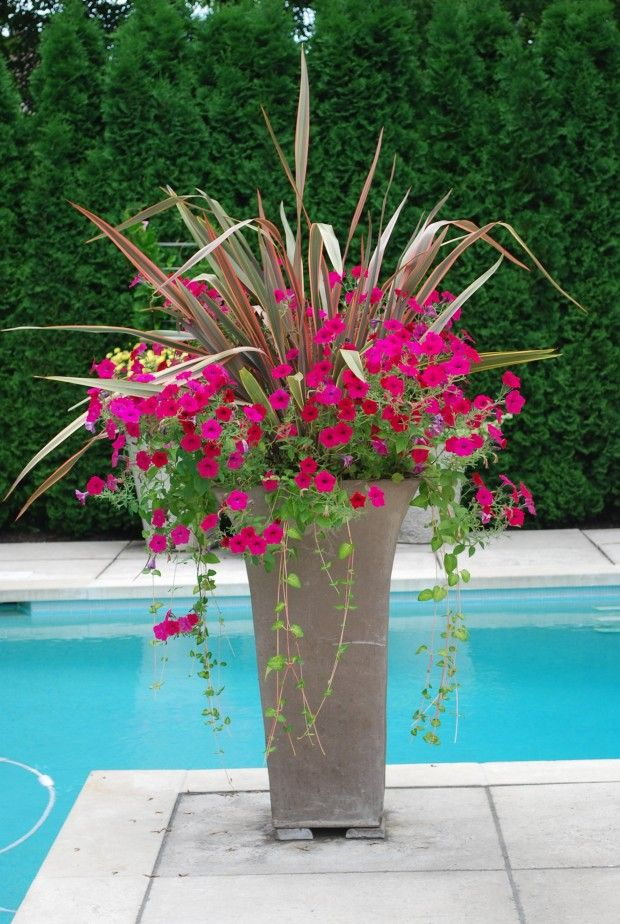 100 Ideas To Try About FLOWERS GARDENS CONTAINERS