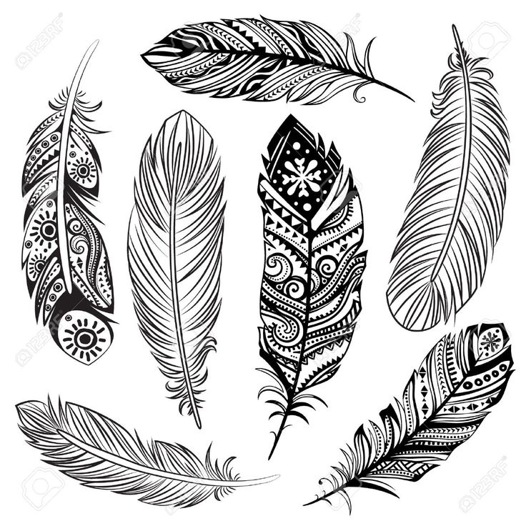 Design Zentangle Line Art Stock Vector Image Of Boho