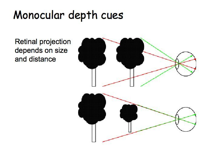 10 best images about Depth Perception on Pinterest