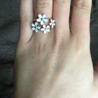 17 Best ideas about Pandora Daisy Ring on Pinterest ...