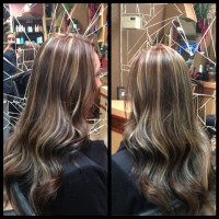 Level 6 Hair Color With Maple Highlights Photo Dark Brown ...