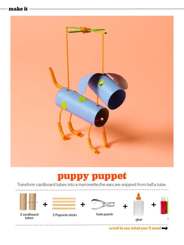 Fun kid craft projects puppy puppet made out of toilet