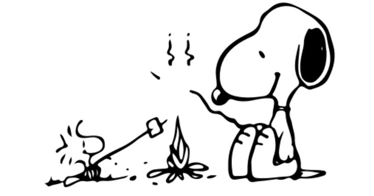 Snoopy And Woodstock Charles Schulz