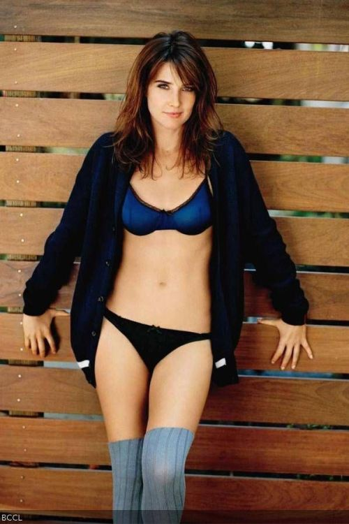 Cobie Smulders: Jacoba Francisca Maria Smulders is a Canadian actress, got instant fame