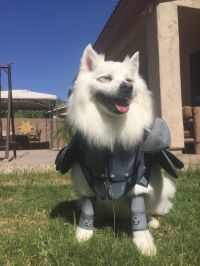 17 Best images about Cosplay on Pinterest   Awesome ...