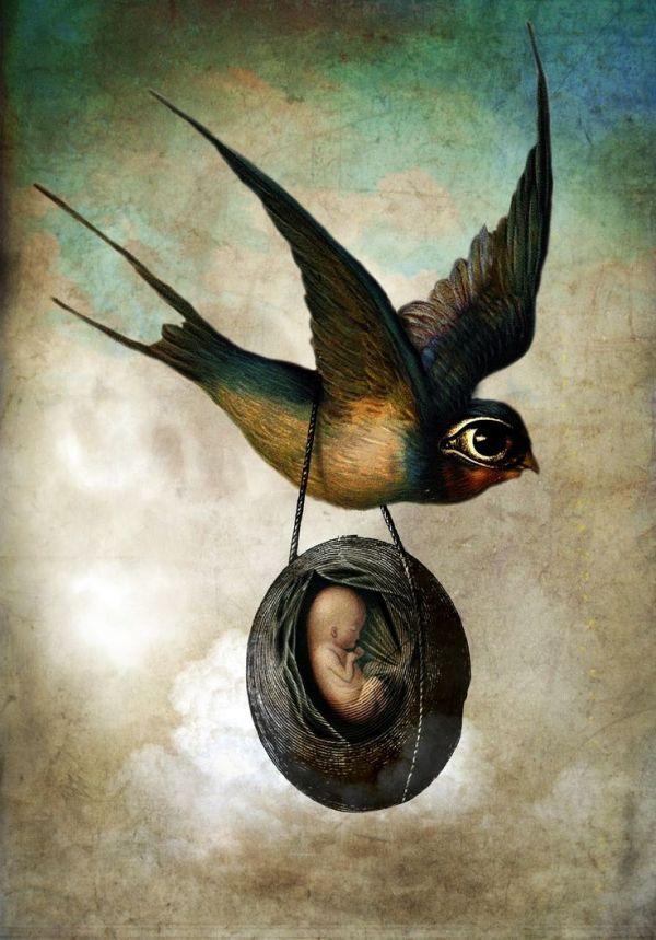 1000 images about Surreal Digital Art on Pinterest