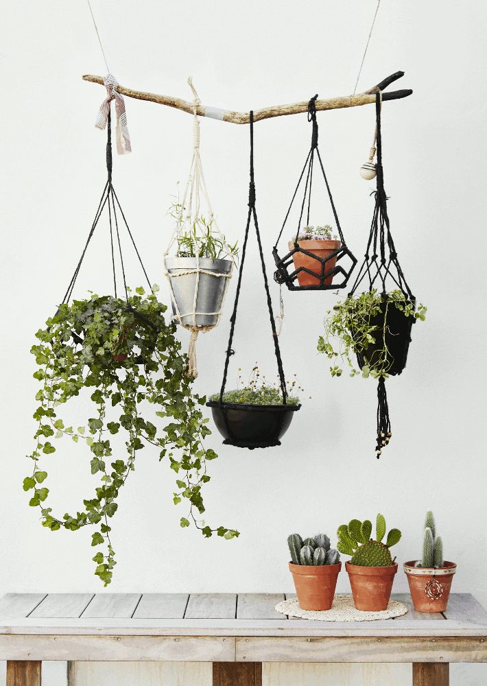 hangepflanzen in blumenampeln deko pflanzen veranda balkon, Gartengerate ideen