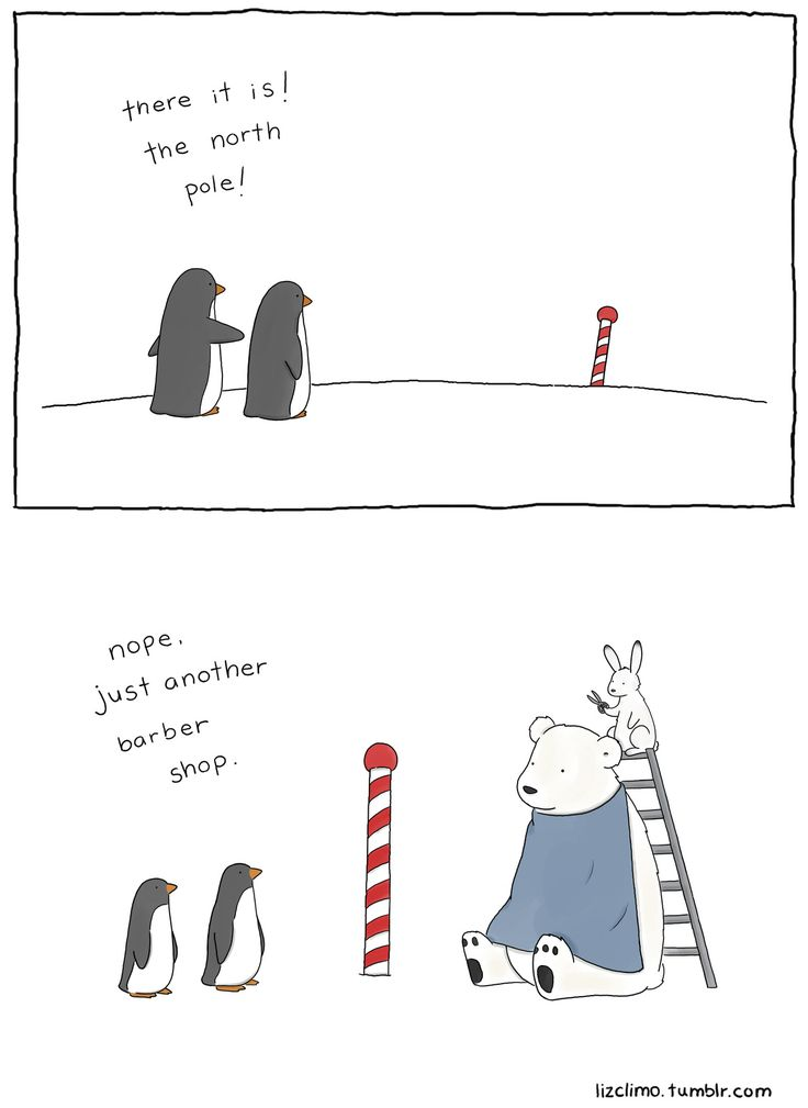 106 best images about Penguin Quotes! Adorbs