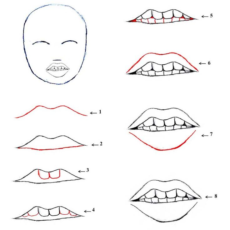 17 Best images about Guide for beginners lines for