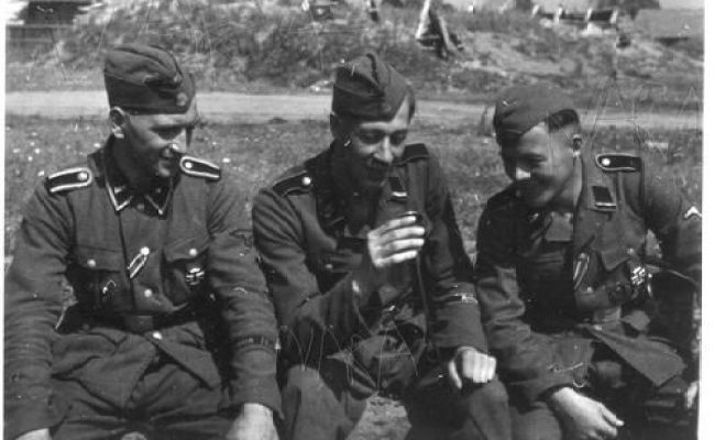 53 Best Images About Waffen 11 Th Ss Volunteer
