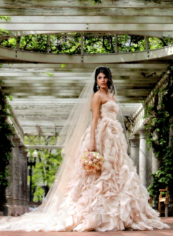 Gorgeous Champagne Wedding Dress  I Heart Wedding Dresses  Pinterest  Colors Wedding and Blush