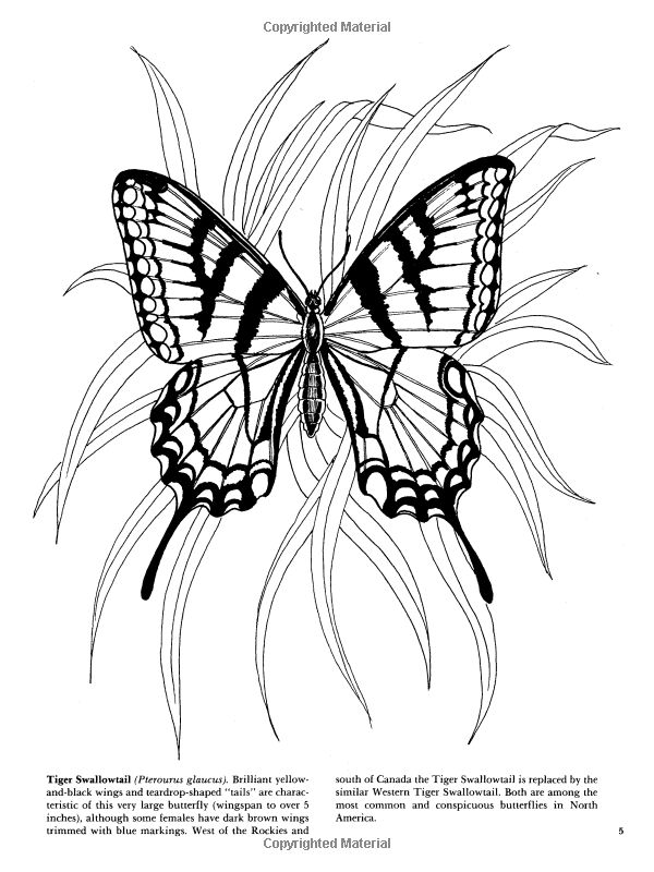 Butterflies Coloring Book (Dover Nature Coloring Book