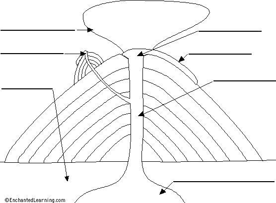 fissure volcano diagram diagram of the internal