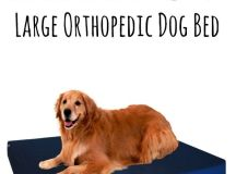 17 Best ideas about Orthopedic Dog Bed on Pinterest ...