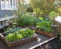 northwest backyard landscape ideas | Northwest Botanicals ...
