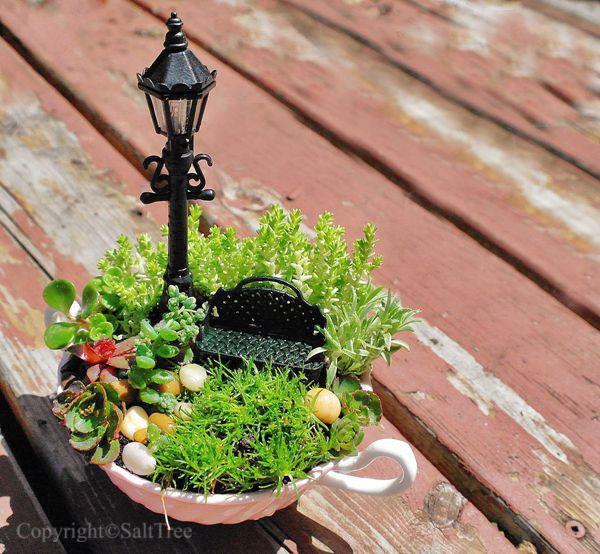 25 Best Ideas About Mini Gardens On Pinterest Mini Fairy Garden