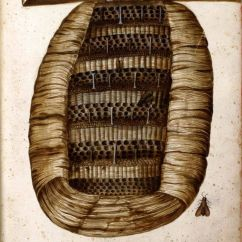 Bumble Bee Diagram Alarm Wiring Cross Section Of A Hive | Honey Pinterest Vintage, Hives And
