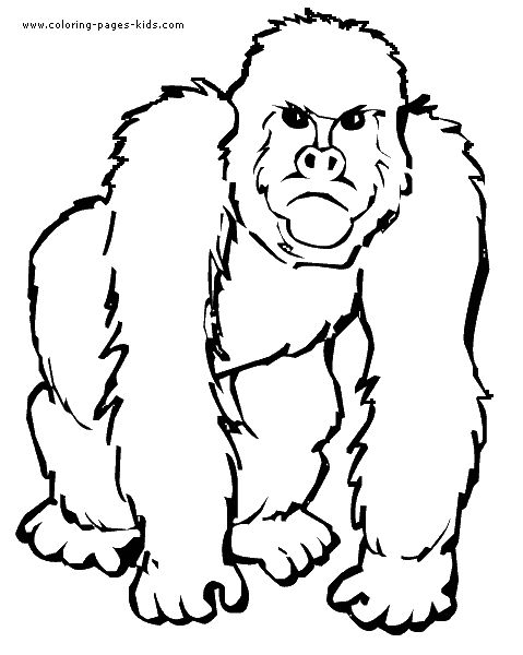 Monkey color page, animal coloring pages, color plate
