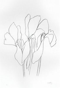 1000+ images about Ellsworth Kelly Drawings on Pinterest
