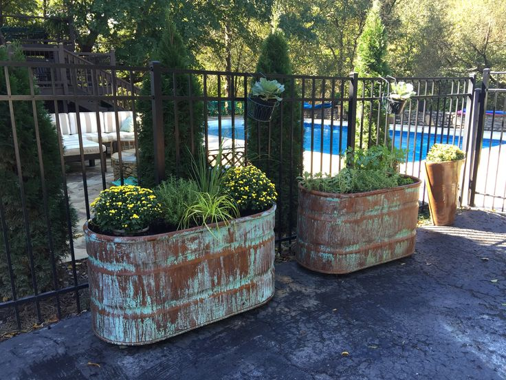 Best 25 Galvanized Planters Ideas On Pinterest