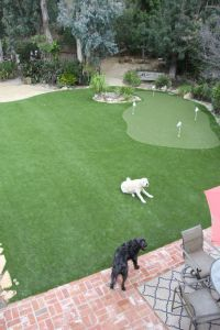 Best 20+ Backyard putting green ideas on Pinterest