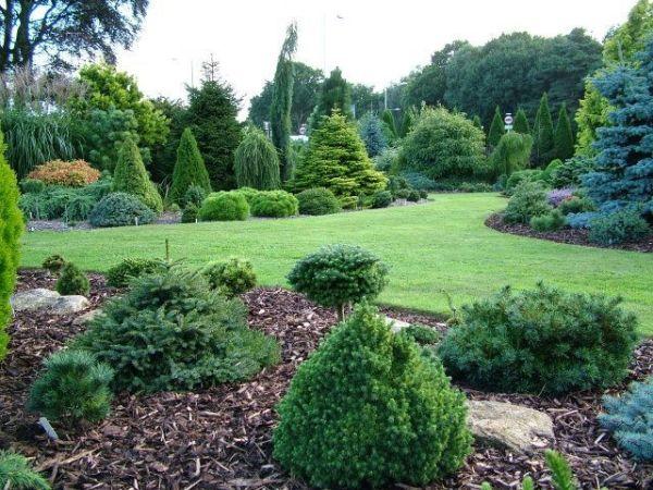 acreage landscaping - google