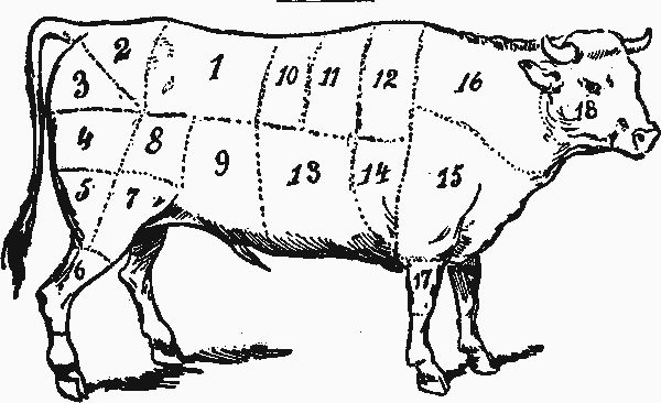 detailed pig butcher diagram use every part of the pig cuts of