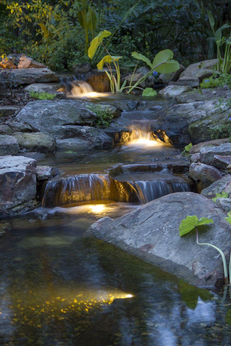25 Best Pond Ideas On Pinterest Ponds Garden Ponds And
