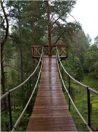 oooowww…lets build a swinging bridge across our pond to lead to a tree house o