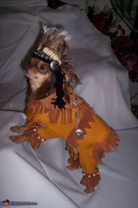 Dog Indian Costume | www.imgarcade.com - Online Image Arcade!