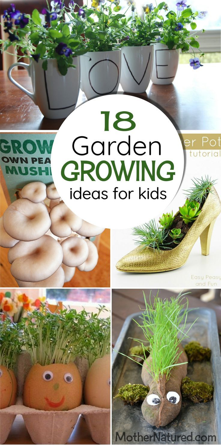 266 Best Images About GARDENING WITH KIDS On Pinterest Gardens