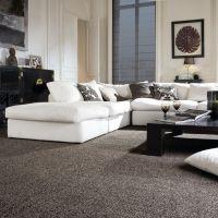 1000+ ideas about Carpet Colors on Pinterest