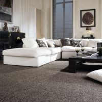 1000+ ideas about Carpet Colors on Pinterest | Wool Carpet ...