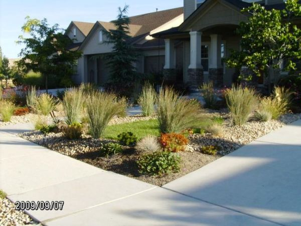 xeriscape yard front curb
