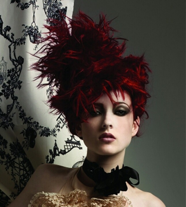 25 Best Images About Weird But Cool Hair Styles On Pinterest