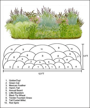 25 Best Ideas About Grass On Pinterest Planting Grass Seed