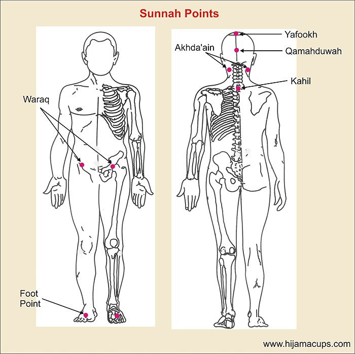 acupressure diagram of pressure points automotive wiring symbol meanings 11 sunnah | hijama cupping pinterest therapy