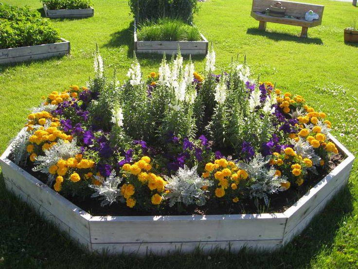 25 Best Ideas About Flower Garden Pictures On Pinterest
