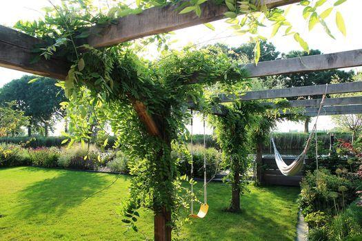 Landelijke Tuin Met Pergola Prieel Overgroeid Met Blauwe