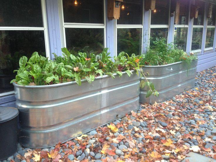 Poly Raised Planter Boxwater Tank