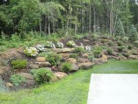 natural steep slope landscaping ideas