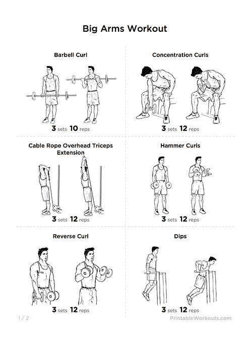 70 best images about workoutlabs.com on Pinterest