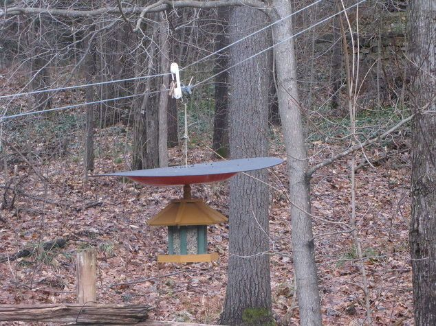 The DEFEEDER Make Your Hanging Bird Feeder Squirrel Proof Hanging Bird Feeders And Bird Feeder