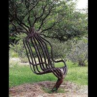 Tree chair..designed by the Great Mother   What did I ever ...