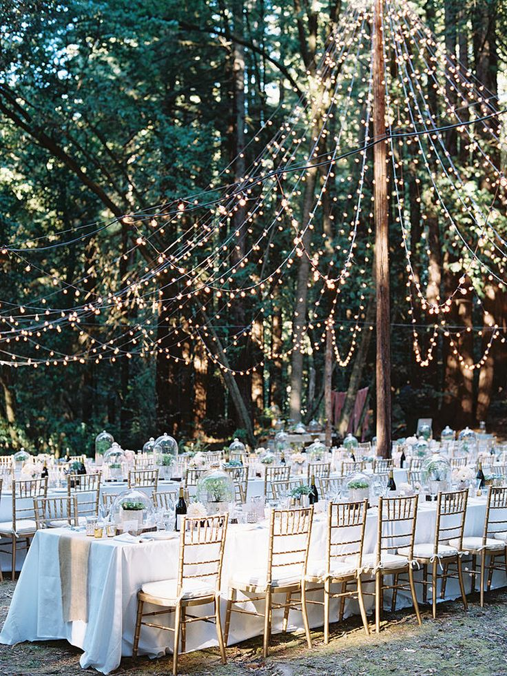 25 best ideas about Fairy lights wedding on Pinterest