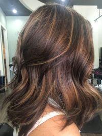 The 25+ best Auburn hair with highlights ideas on ...