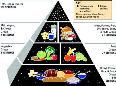 USDA Food Pyramid 1988 FOOD Pinterest Food
