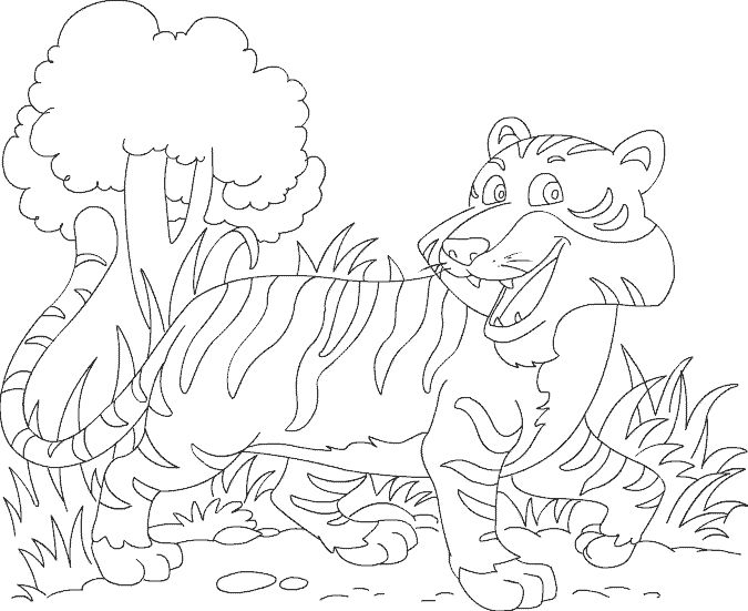 1000+ images about Animals Preschool ideas on Pinterest