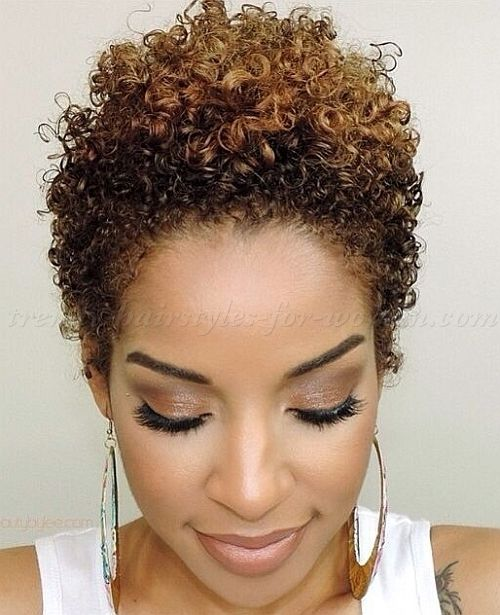 25 best ideas about Short natural hairstyles on Pinterest