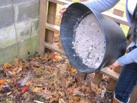 What to do with fireplace ashes | Gardens, Ash and Fireplaces
